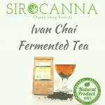 Organic Fermented Ivan Chai (50 gr.)
